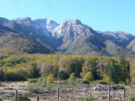 Reserva de la Biosfera Corredor Biológico Nevados de Chillán – Laguna del Laja