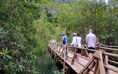 Empresas de 16 países tras experiencias en turismo de naturaleza de Colombia