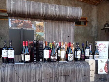 Día Nacional del Vino Chileno