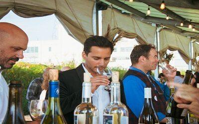 Chile celebra sostenibilidad en Nueva York con vinos del Valle del Itata