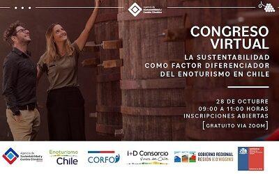 La sustentabilidad como factor diferenciador del enoturismo en Chile