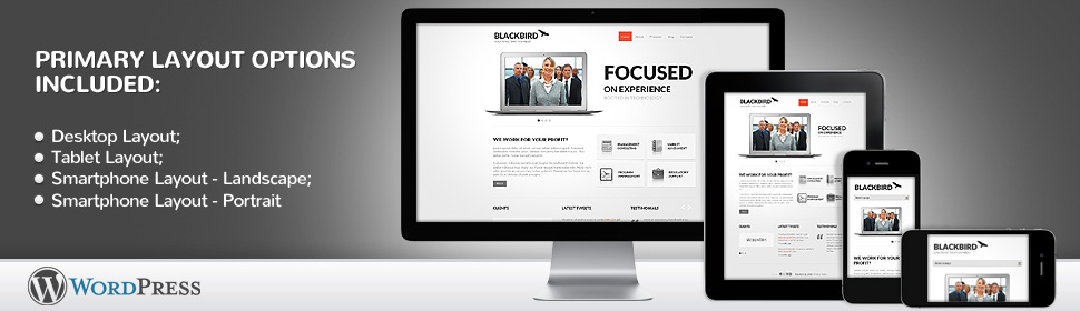 5 Reasons for Responsive Website Design