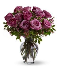roses lavendar