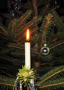Candle_on_Christmas_tree_3