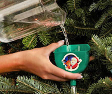 christmas_tree_watering