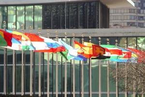 UN-Flags-full-size-300x200