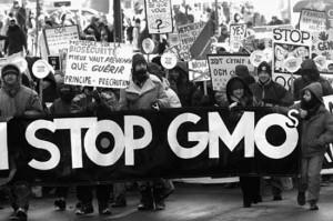 GMO-protest-300x199