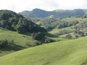 green-hills_CHolt