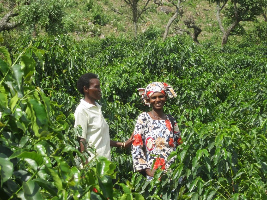 green rural women