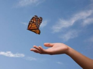 letting-go-butterfly(1)