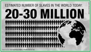 Estimated Number of Slaves Image1