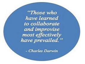 darwin collaborate