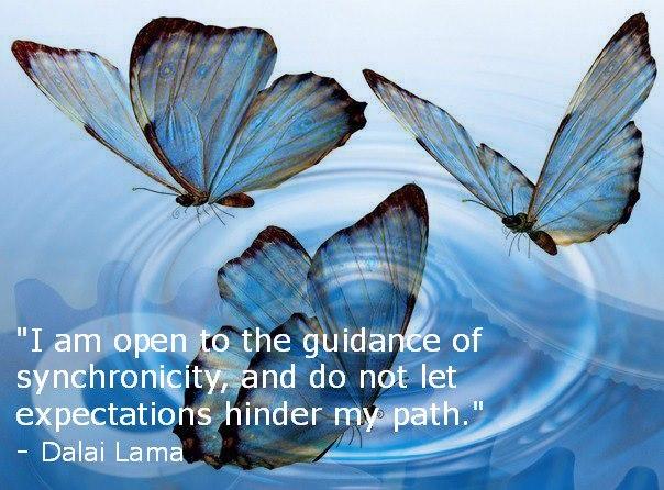 sychronicity butterfly dalai lama