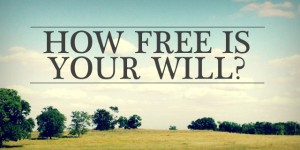 how is your FREE WILL