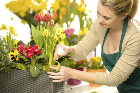 woman tending to garden pot full of tulips