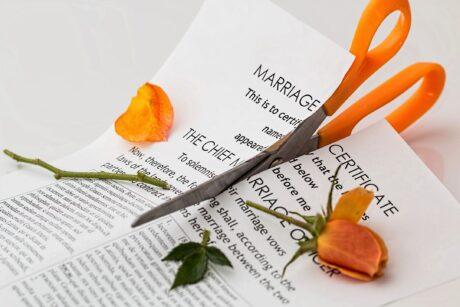 marriage certificate being cut by orange scissors that also cut a single rose stem in half representing divorce