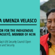 Ms. Celia Umenza Velasco at the UN Security Council Open Debate on Women, Peace and Security