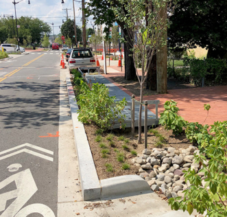 Photo of Bioretention Curb Extensions next to bicycle lane
