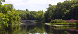 Charles River in Needham