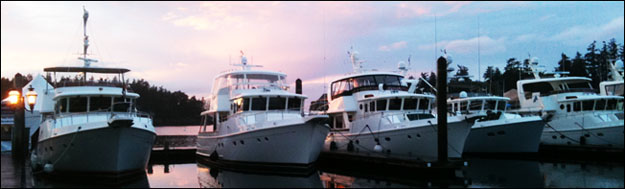 yachthead2