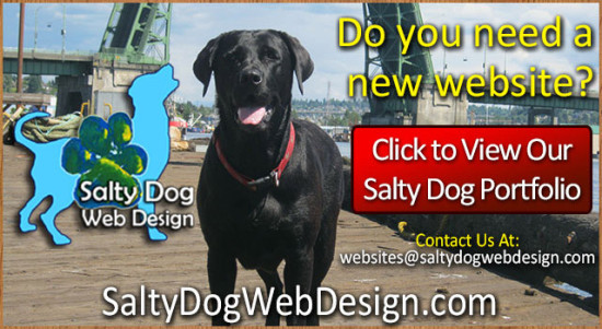 Salty Dog Web Design, Who needs a new website