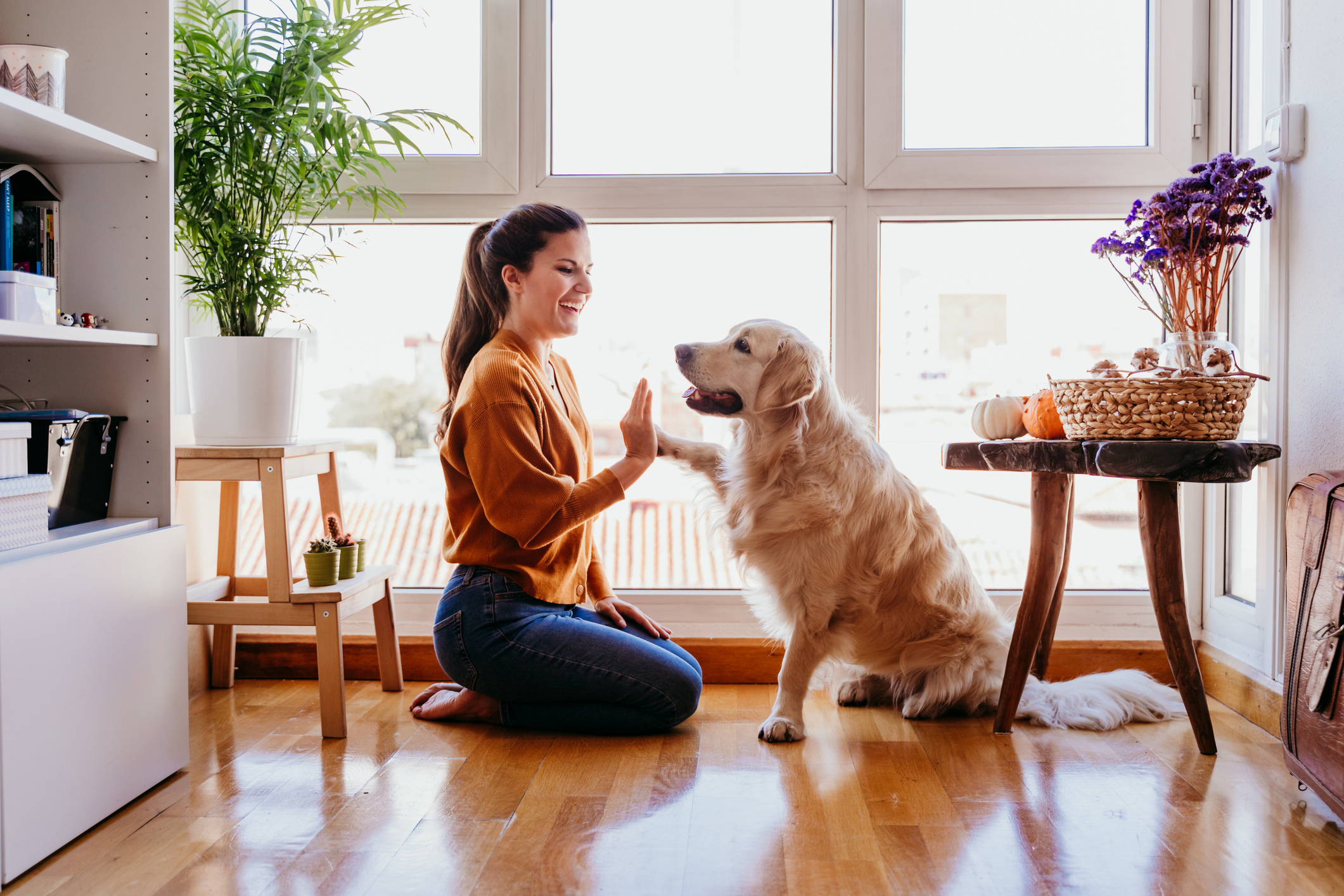 woman relaxing with her dog in a clean home, mrs clean pittsburgh, pet cleaning service near me, cleaning up pet hair, golden retriever, woman, clean house, pittsburgh pa