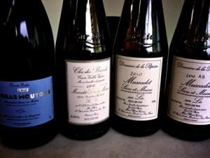 muscadet-hipster-wines-drvino
