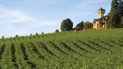 Willamette-Valley-Vineyards