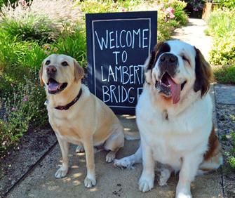 Gus-Bernie-Lambert-Bridge-Winery