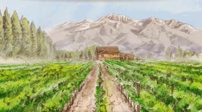 Spring at the Piattelli Vineyards