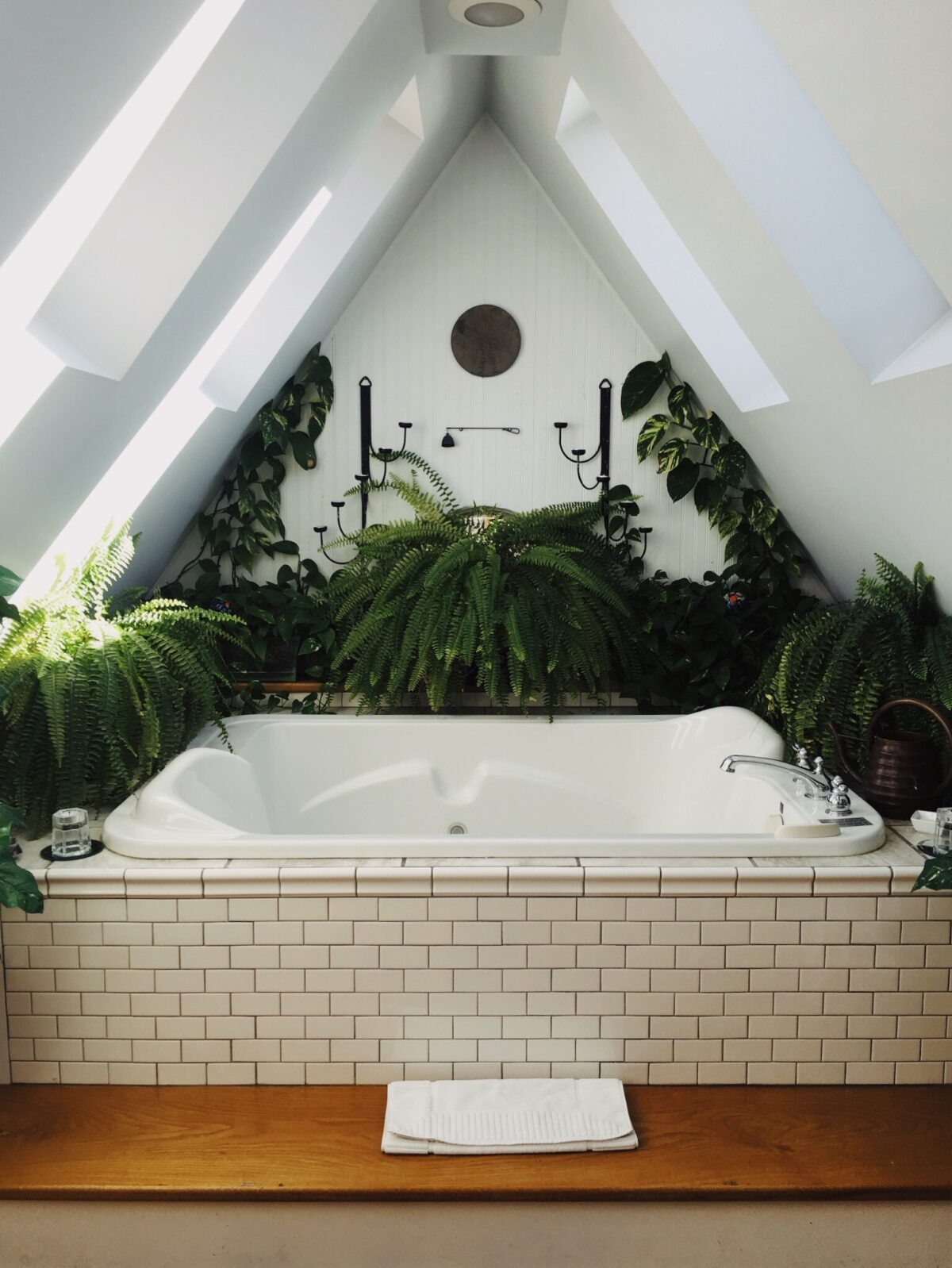 destress bathtub with plants