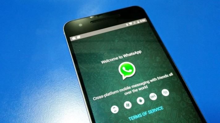 Image of a phone with WhatsApp installed