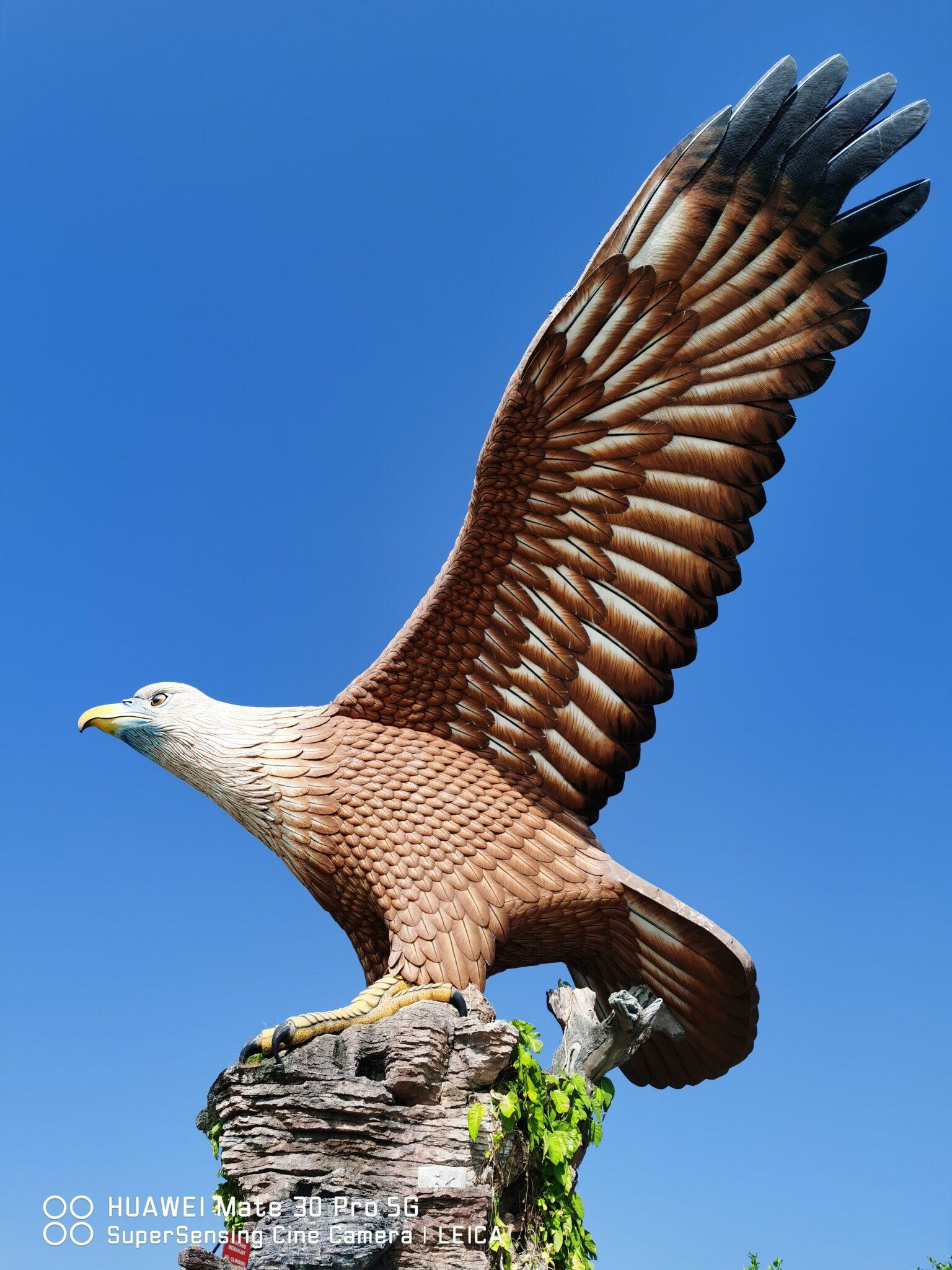 Mate30 Pro 5G eagle