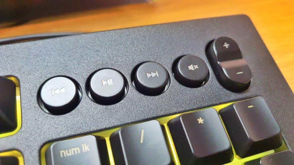 Razer Cynosa V2 Review media keys