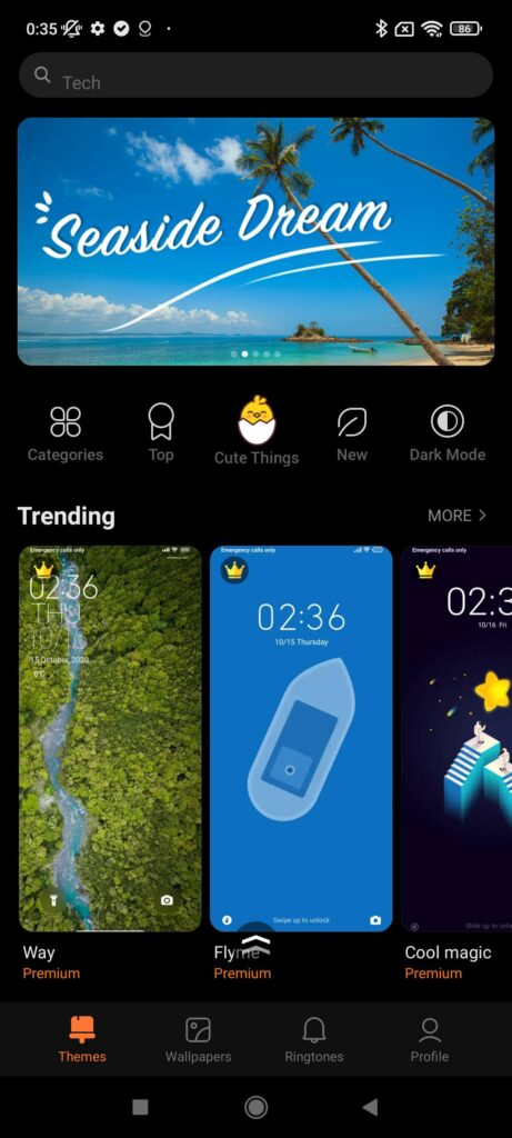 Xiaomi Redmi Note 10S Review theme manager