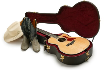 Read more about the article Importance of country music