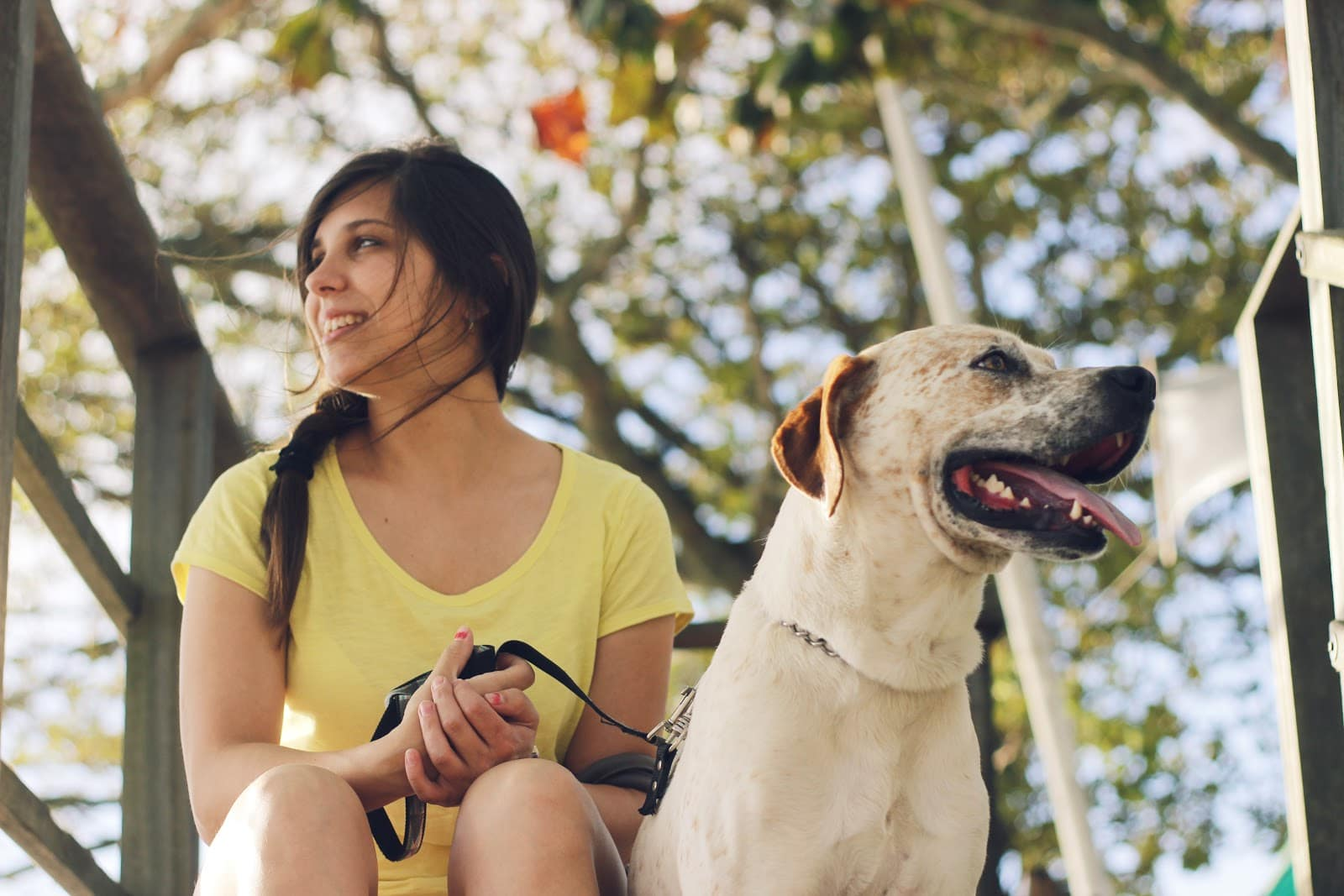 The 10 Best Dog-Friendly Vacation Destinations