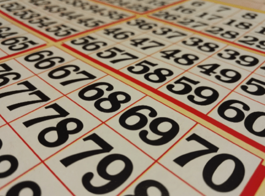 Read more about the article B-I-N-G-O! A First-Timer's Guide on How to Play Bingo
