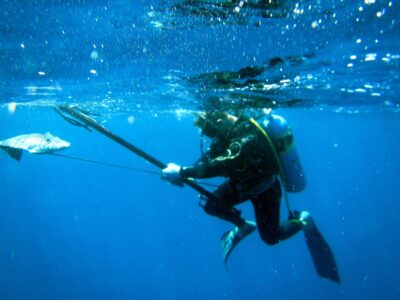 The Spearfishing Guide to Get the Biggest Catch Under Water Like a Pro