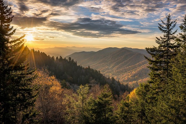 Read more about the article Enjoying Nashville Nature