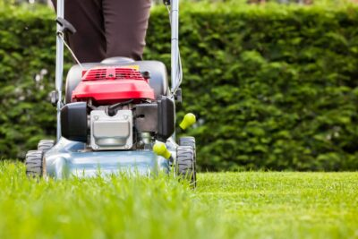 Everything You Need to Know to Start a Lawn Care Business