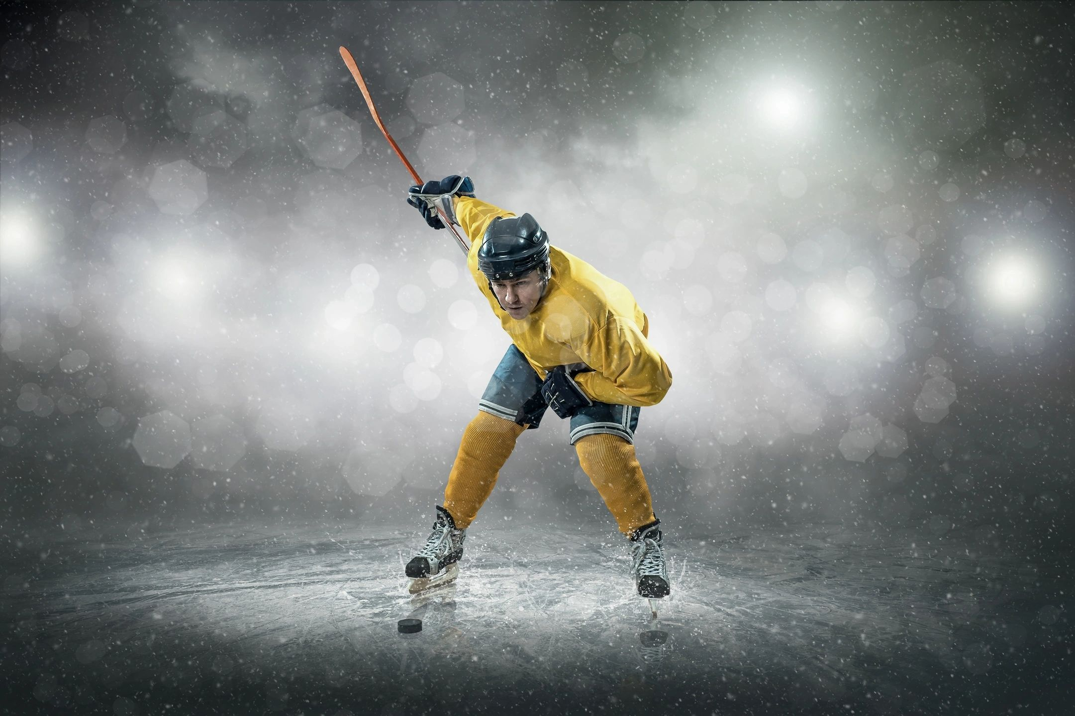 Read more about the article Ice hockey: forecasts as the most important thing in betting
