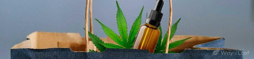 Read more about the article CBD Products Are Hot but Are They Good for Us