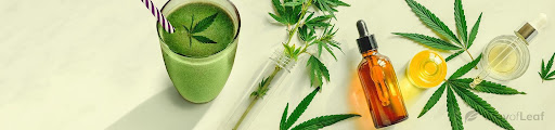 Read more about the article What Is Hemp Oil Used for in Cooking