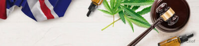 Everything You Need to Know About CBD Oil in the UK