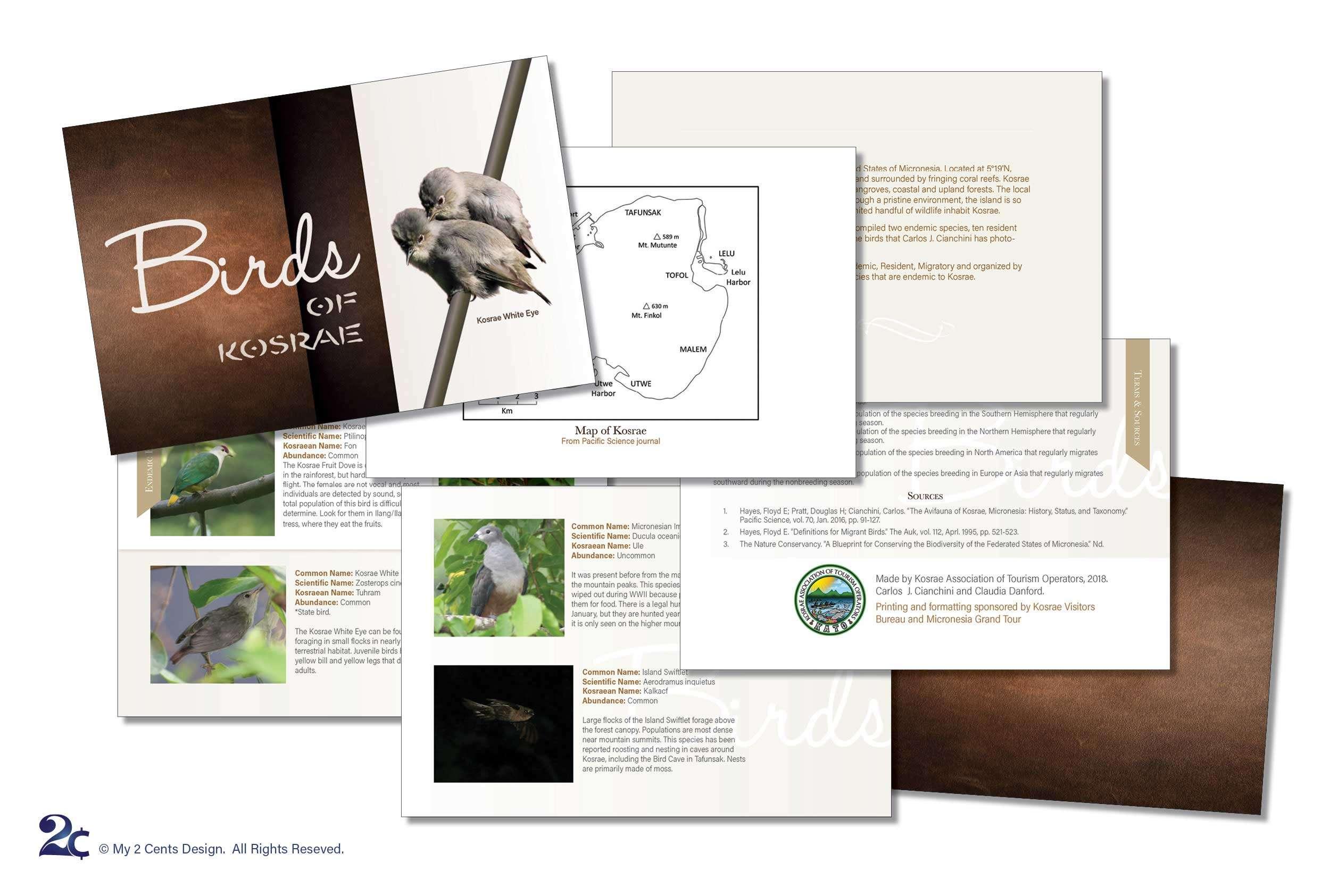 Bird Ornithology Book Design Sample - Native Birds