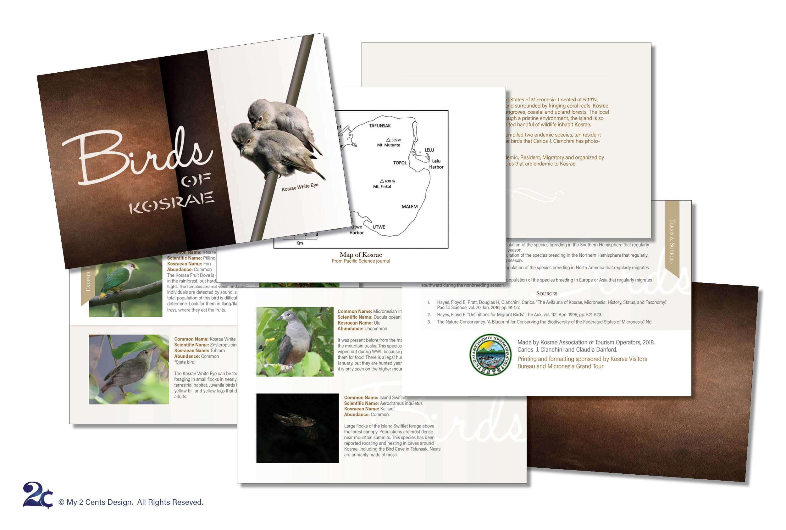 Bird Ornithology Book Design Sample - Native Birds