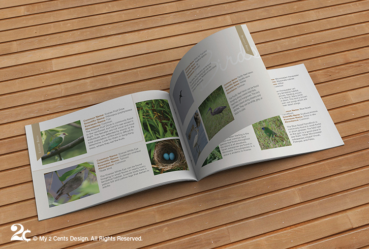 Wildlife Birds Landscape Booklet Design 2
