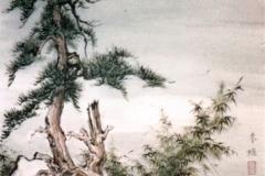Pine-in-Moonlight-1