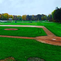 Commercial sports field landscaping